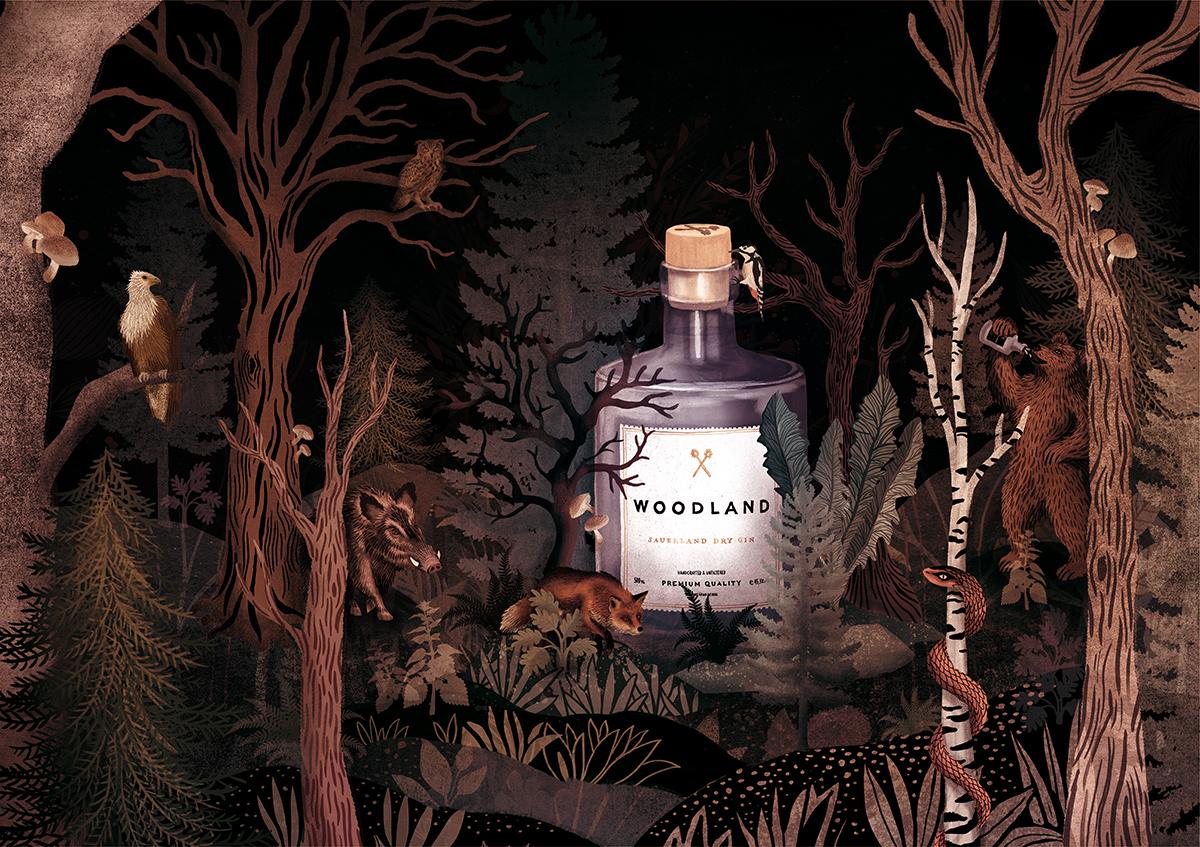 Elsa Klever Illustration Woodland